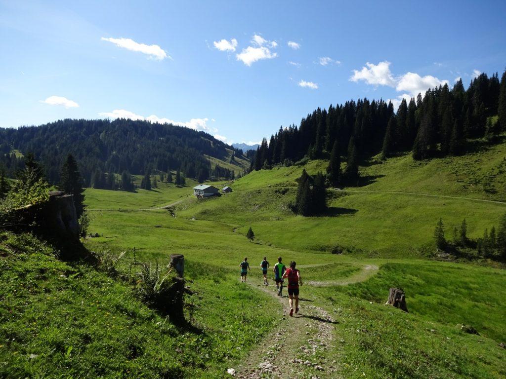 Trail Natur Berge Allgäu Panorama Marathon