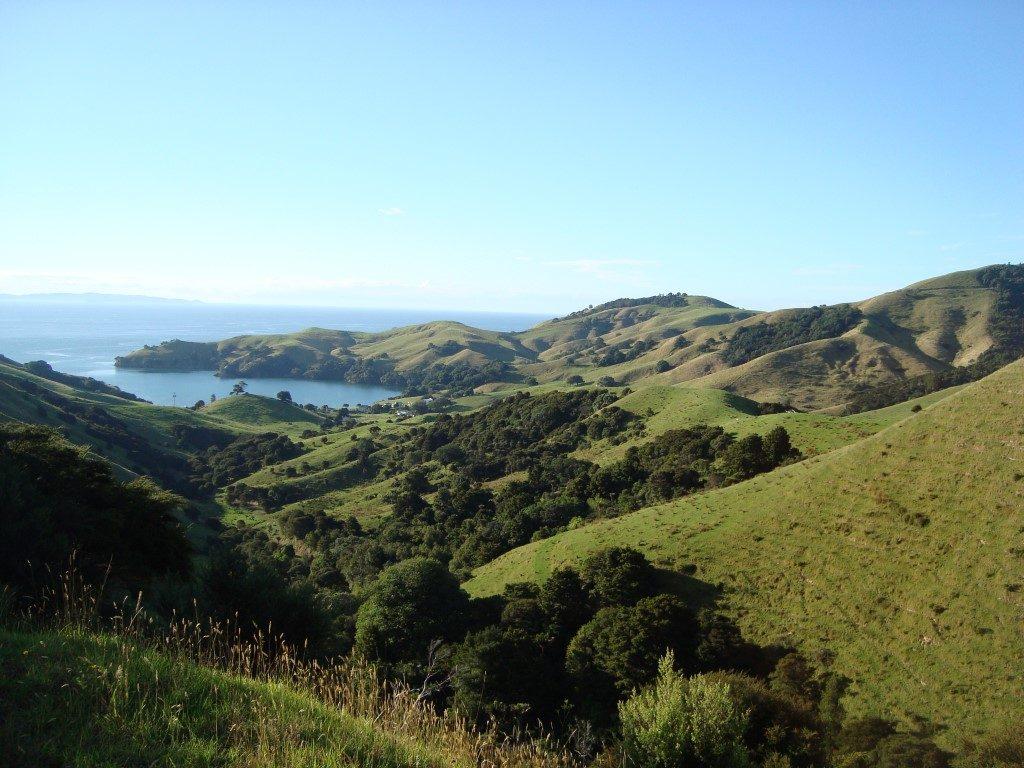 Coromandel Hügel Nordinsel Neuseeland