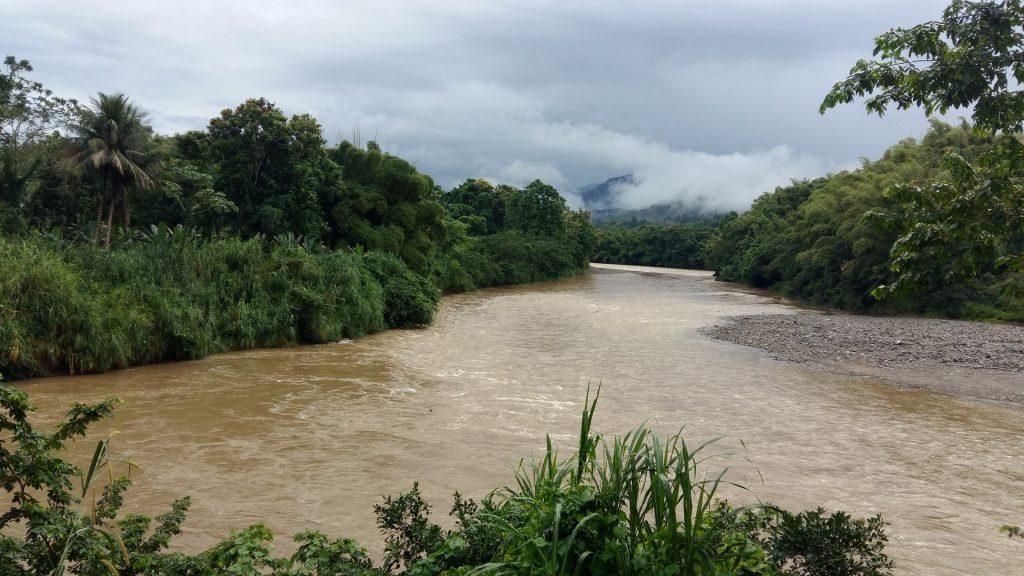 Fluss Natur Jamaika