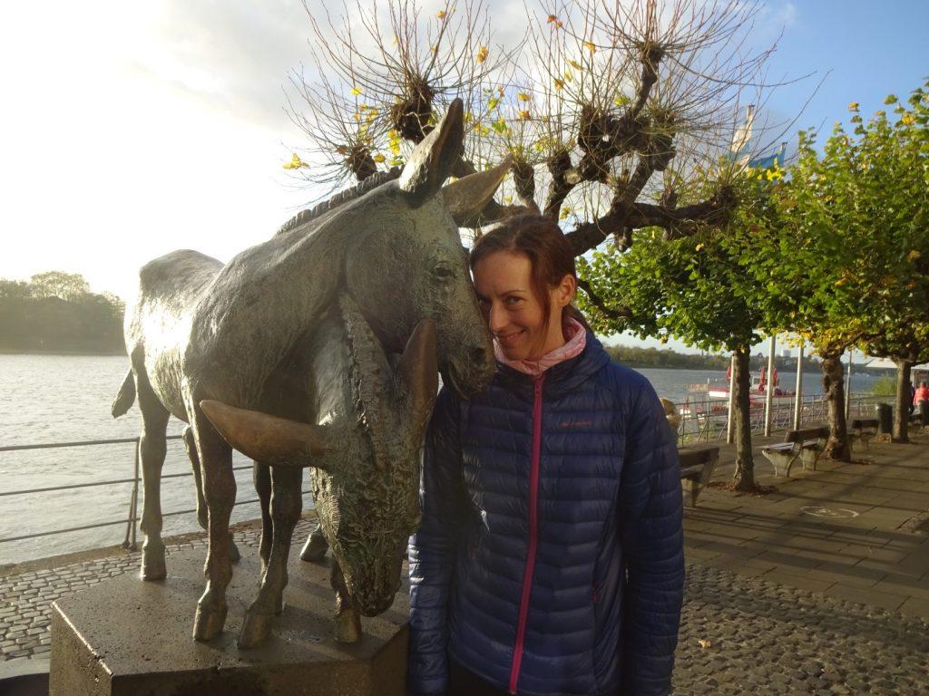Esel Wahrzeichen Königswinter Bonn