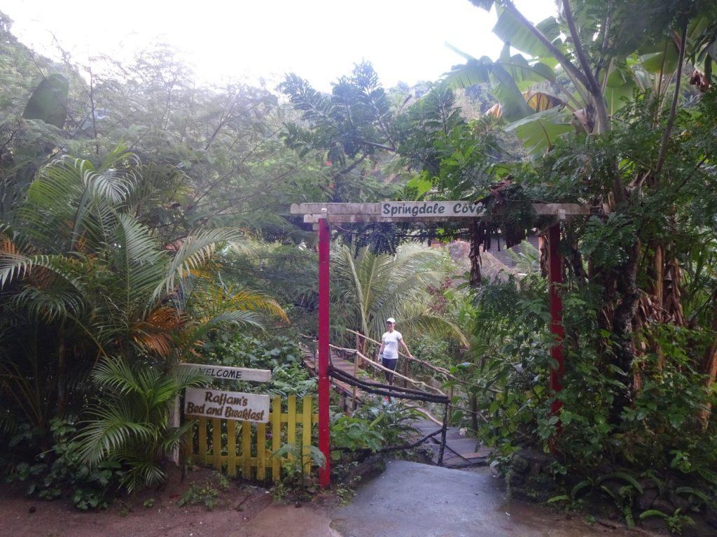 Dschungel Eingang Rafjams Bed and Breakfast Jamaika