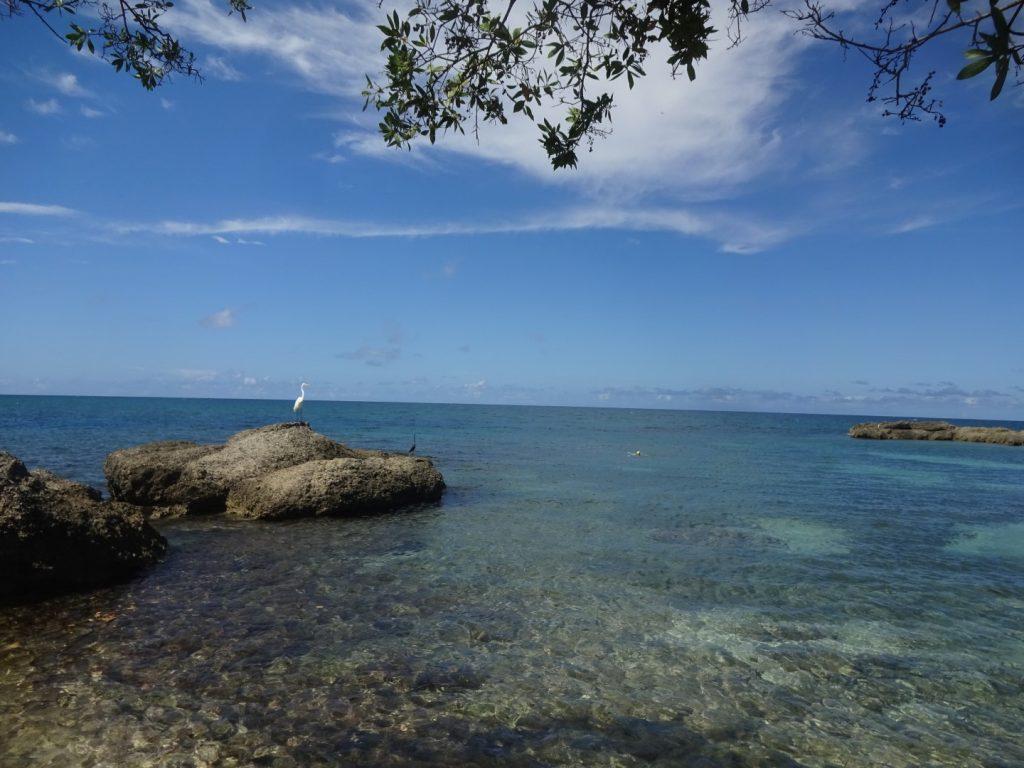 Strand Bucht einsam kostenlos Jamaika