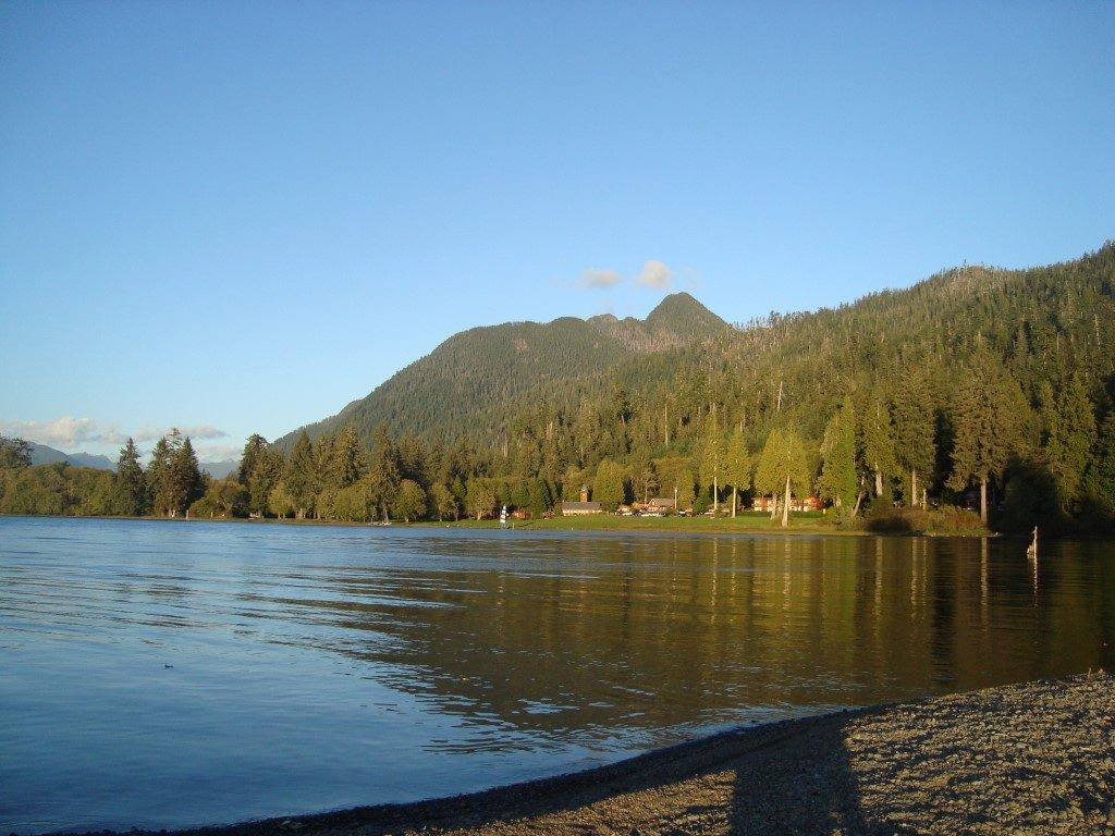 Lake Quinault Olympic National Park Washington