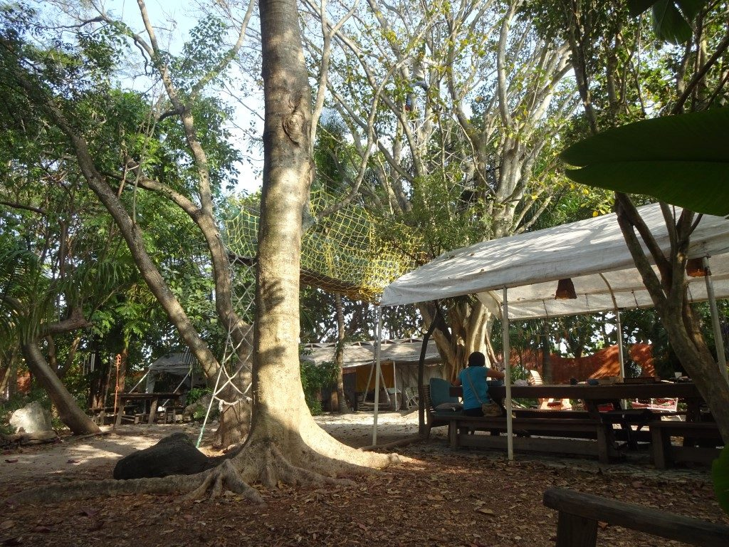 Everglades Hostel Garten Florida City