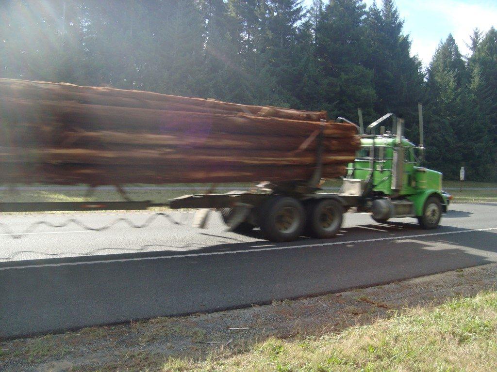Highway 101 Truck LKW Baumstamm Radfahrer Feind Gefahr gefährlich