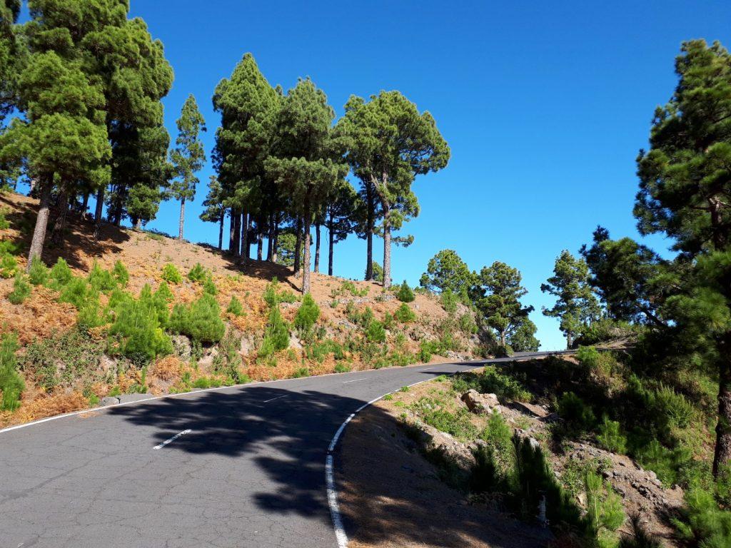 Straße Radfahren La Palma Kanaren