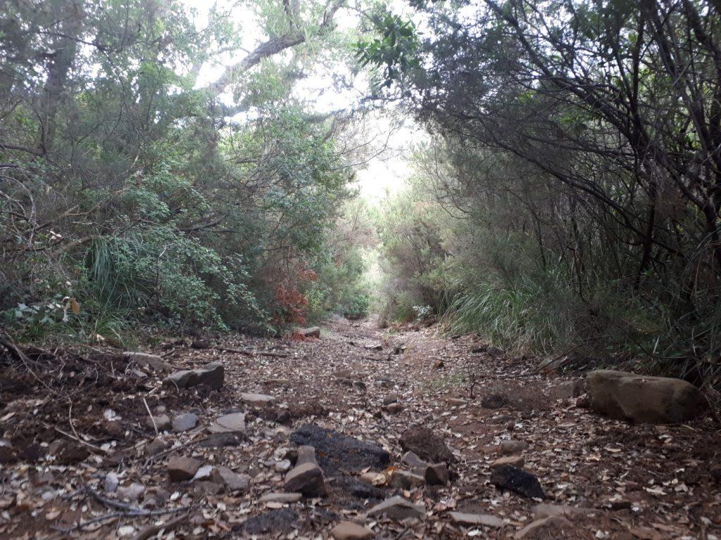 Trail Hinterland Cefalu Sizilien Italien