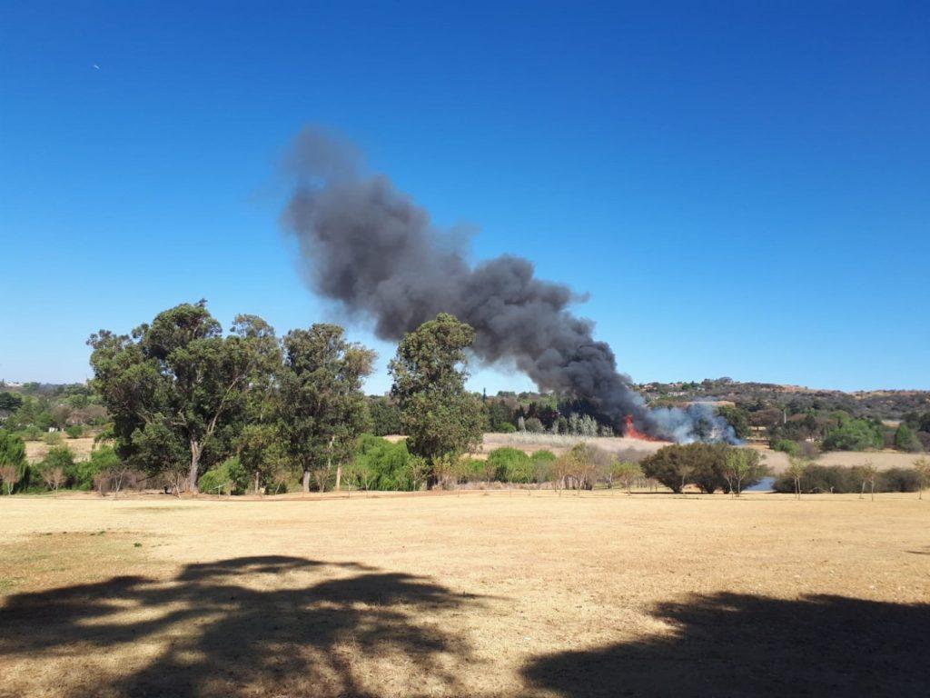 Feuer Wiese Botanischer Graten Johannesburg Südafrika