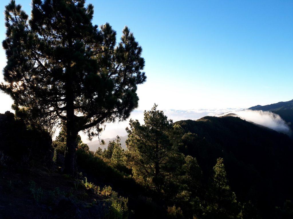 Sonnenaufgang Transvulcania Trail La Palma Kanaren