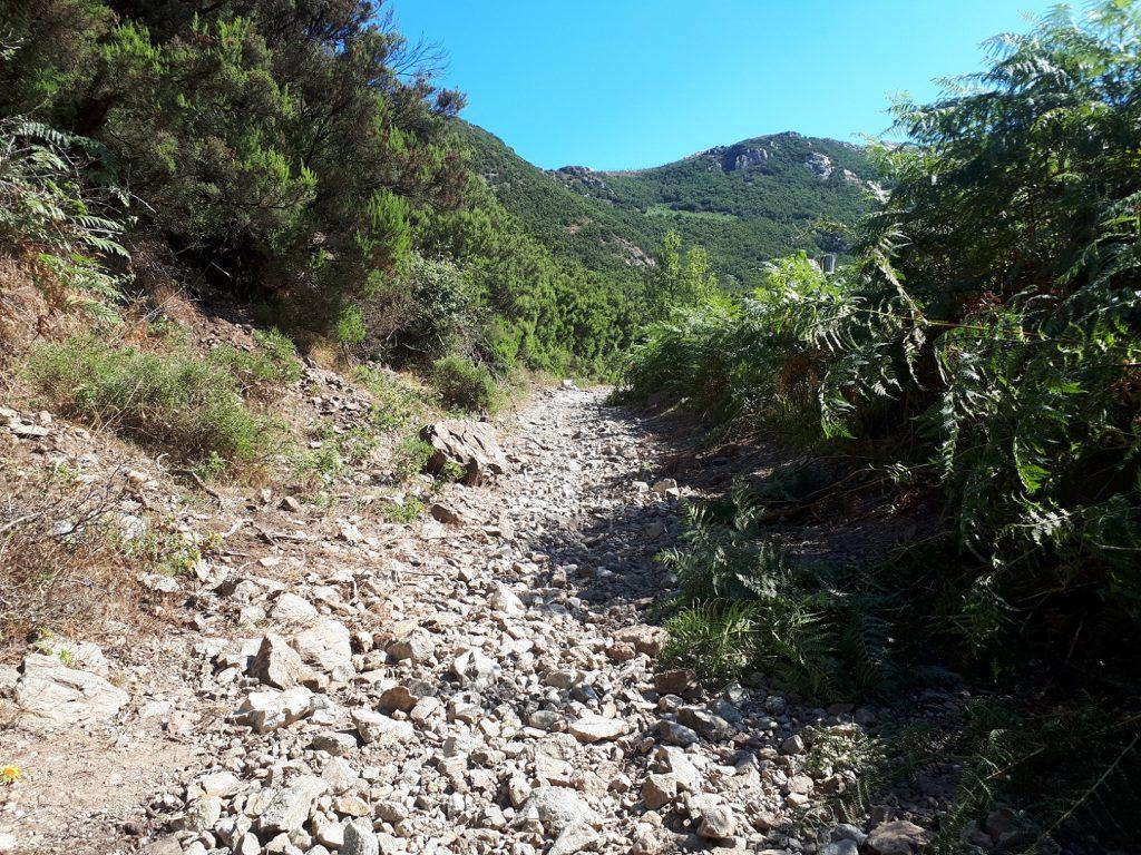 Strada Provinciale 50bis Gipfelpfad Sizilien Italien