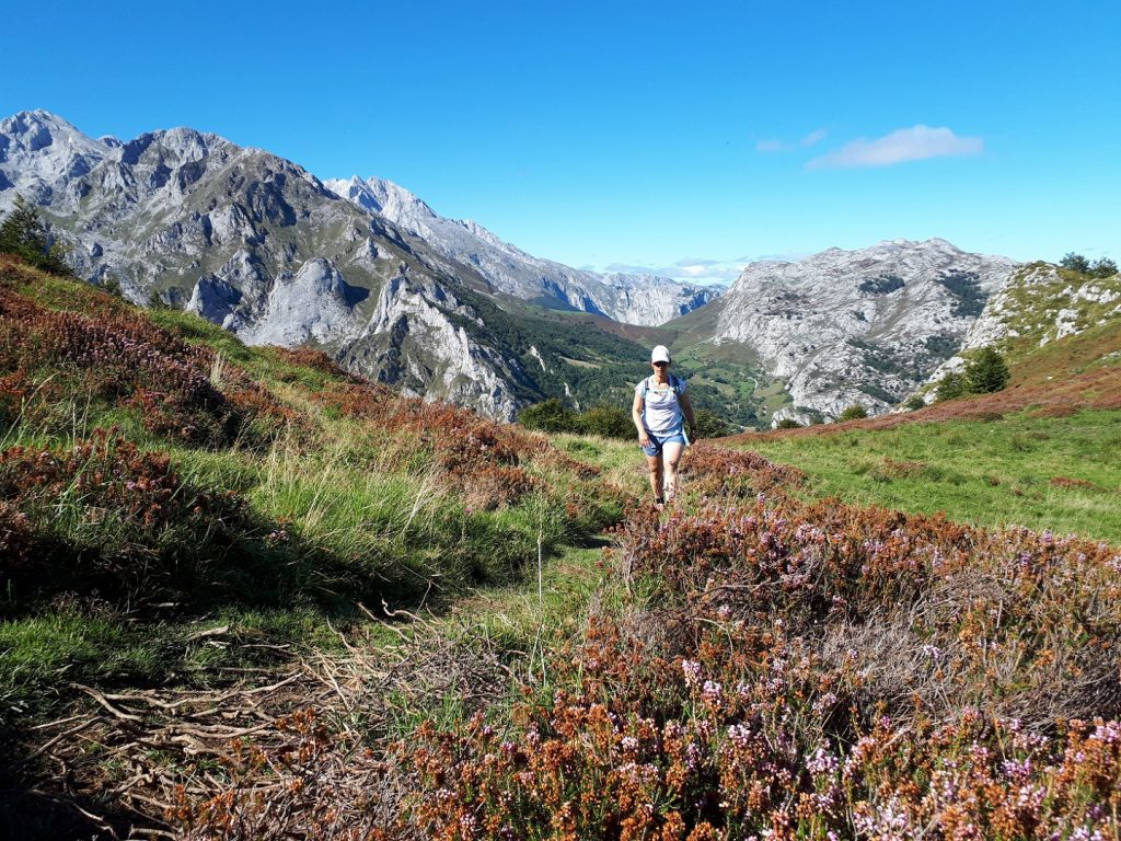 Blumen Trail Picos de Europa Nationalpark