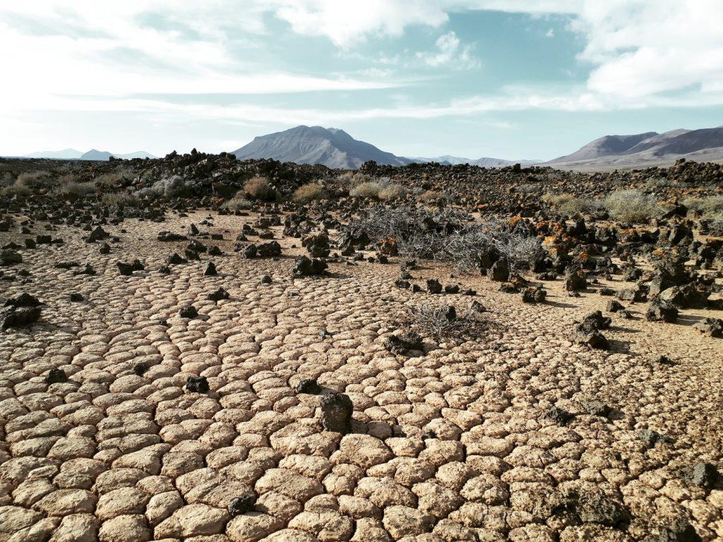 Wüste Naturpark Cuchillos Vigan Fuerteventura Kanaren