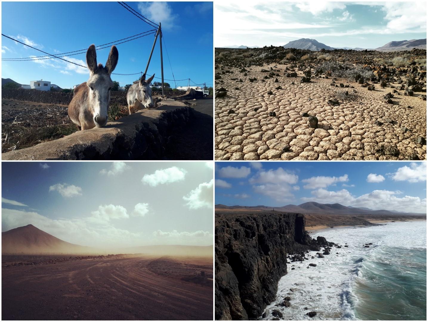 Wintertraining auf Lanzarote und Fuerteventura