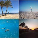 Trainingswoche Marsa Alam Ägypten