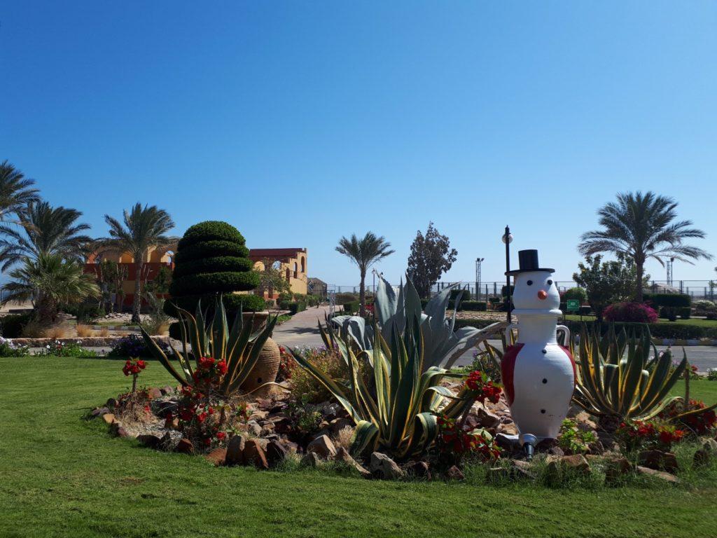 Winter Malikia Resort Marsa Alam Ägypten