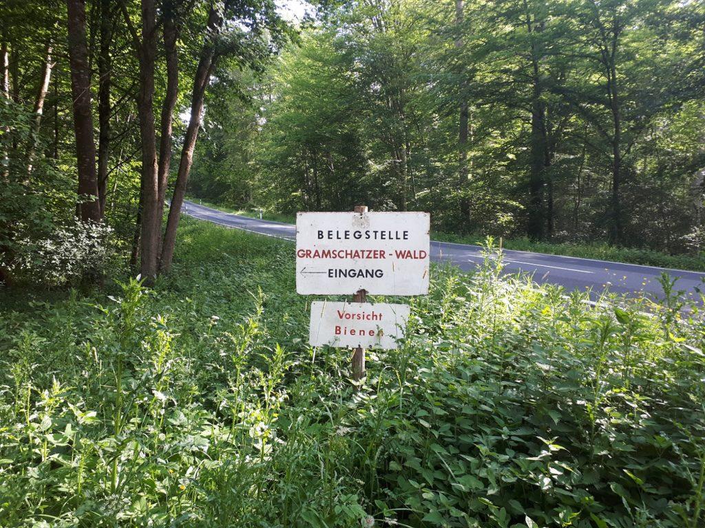 Gramschatzer Wald Vorsicht Bienen