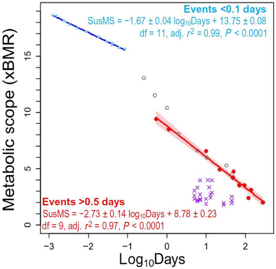 Metabolischer Bereich Dauer Ausdauer maximale Ausdauerleistung