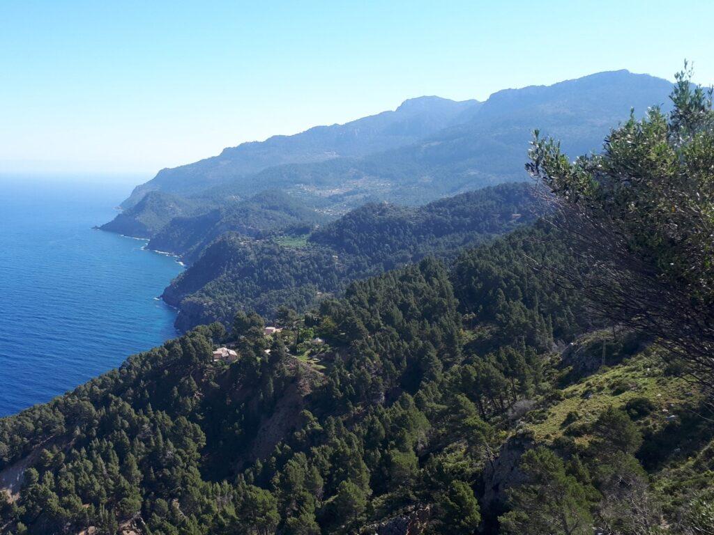 Nordseite grün Tramuntana Estellencs Mallorca