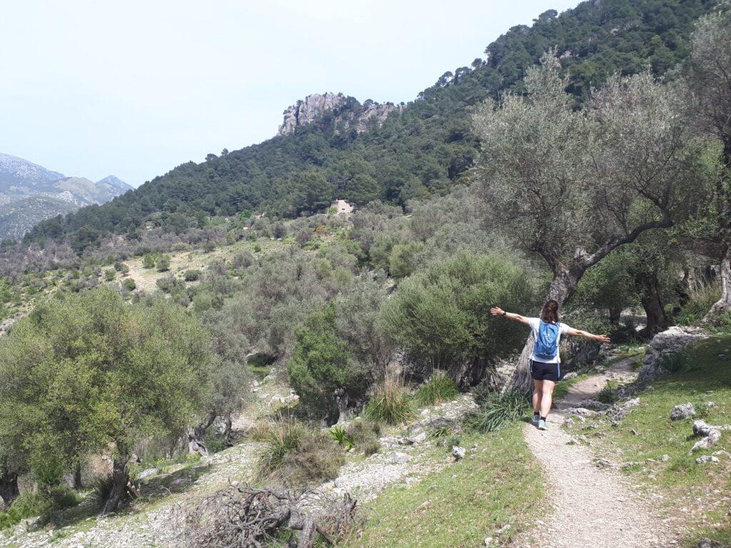 Rundweg Orient Alaro Mallorca