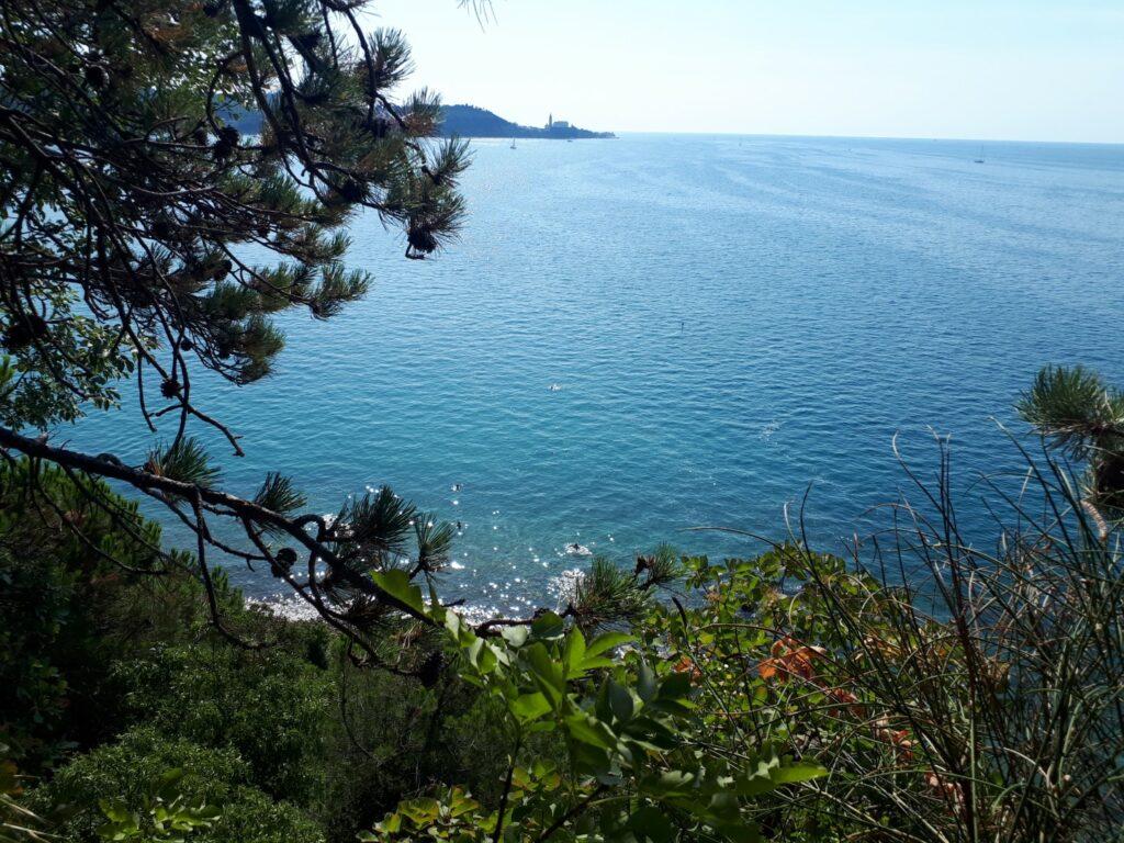 Küste Piran Izola Slowenien